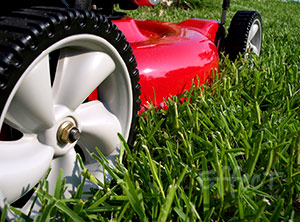 weekly lawn care services in calgary area